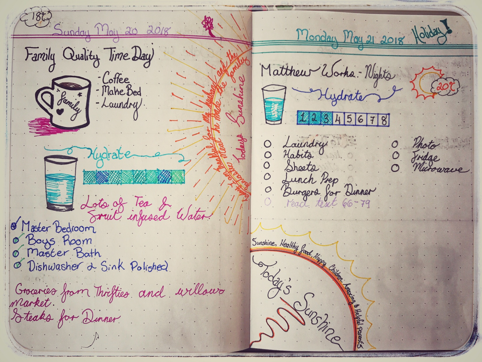 Bullet Journals Daily Pages